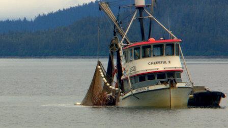 觀賞鱈魚已死。第 1 季第 6 集。
